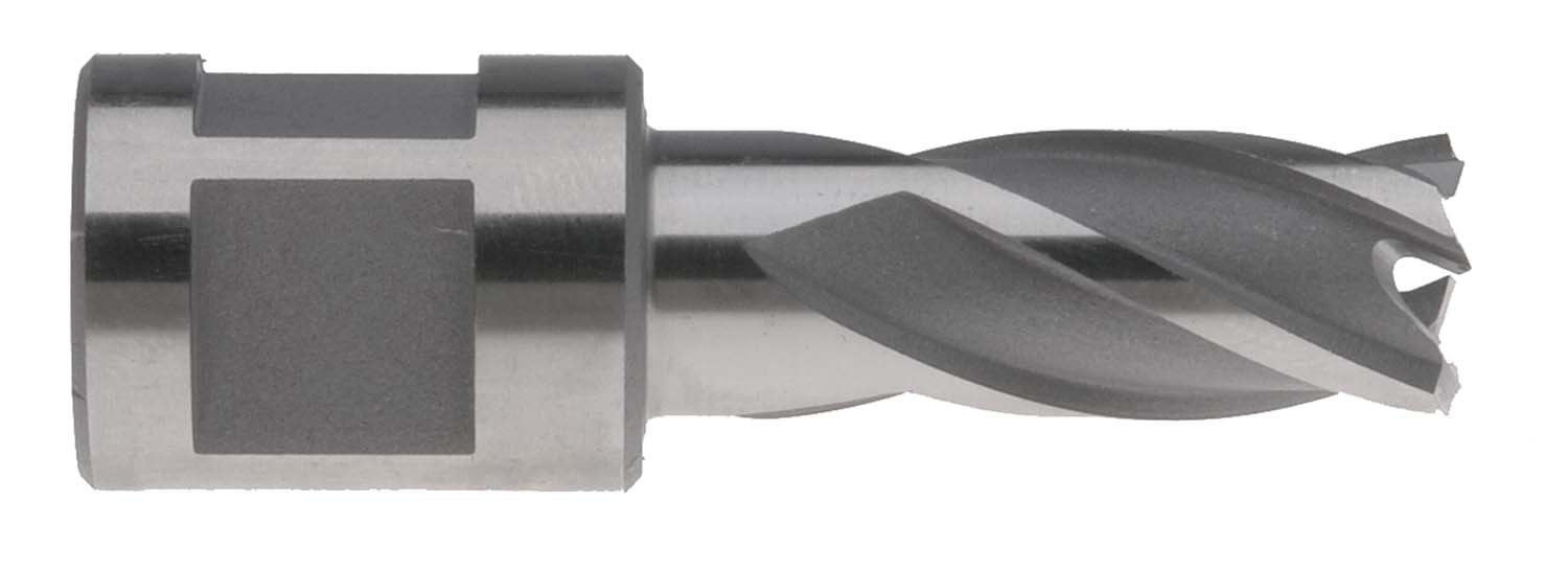 "Annular Cutter, 1"" long, 3/4"" diameter"